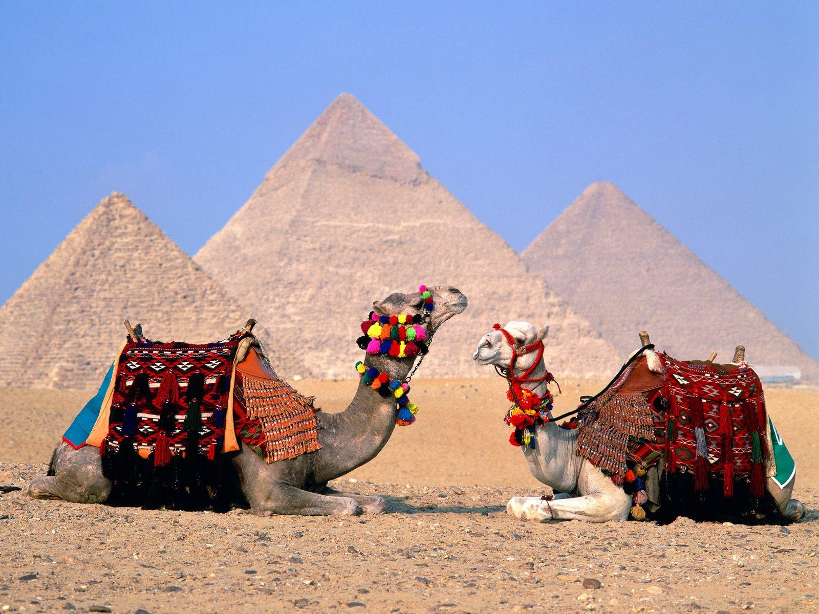 Туры и путевки в Египет из Новосибирска
